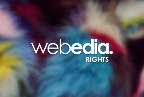 Webedia Rights, nouvelle activité de distribution internationale de droits et formats audiovisuels